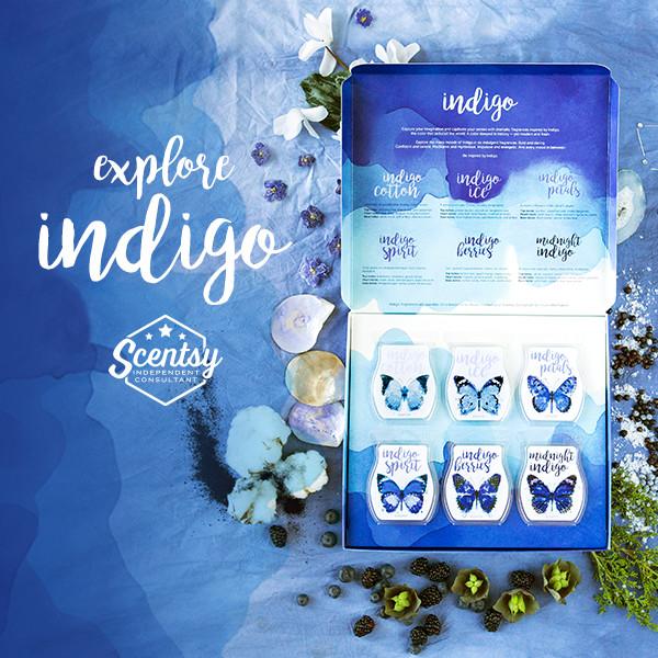 Social-Indigo-2-600x600px-R1-EN.jpg